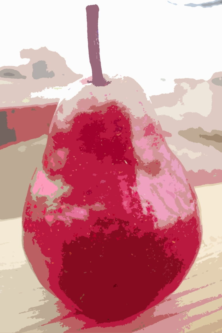 """Country Pear #5"" © Jennifer Ressmann, 2010"